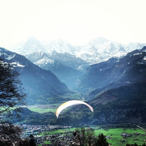 Paragliding over Interlaken! #swissalps #paragliding #adventure (at Jugendhaus Ramsern)