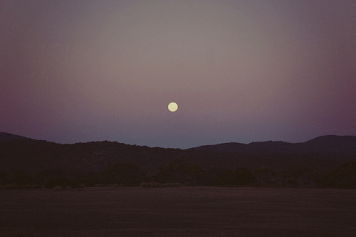 fiskarna:  untitled by coolhandluke on Flickr.