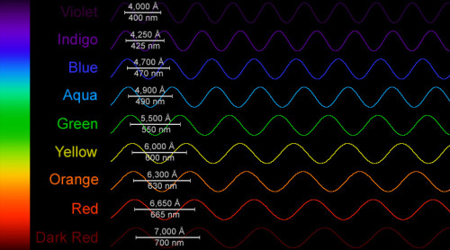 "mucholderthen:  Electromagnetic Spectrum - Range Visible by HumansThe spectrum of sunlight has approximately the spectrum of a black-body radiating at about 6,000 K, Electromagnetic waves that are low frequency have low energy and a long wavelength Electromagnetic waves that are high frequency have high energy and a short wavelength. All electromagnetic waves travel at the same speed - the ""speed of light"" (c = 300,000 km/sec or 186,000 miles/sec). ( source )"