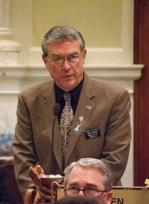 "Sen. Craig Tieszen, R-Rapid City, speaks in favor of a ""sentinels"" bill letting schools arm volunteer defenders on Wednesday, Feb. 27, 2013. The bill passed 21-14."