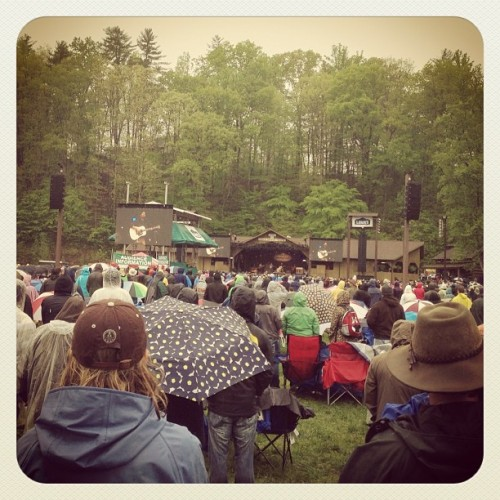 avetts! (at Merlefest)