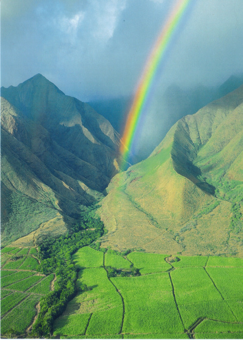 senerii:  Rainbow Over Paradise by fightingforward on Flickr.
