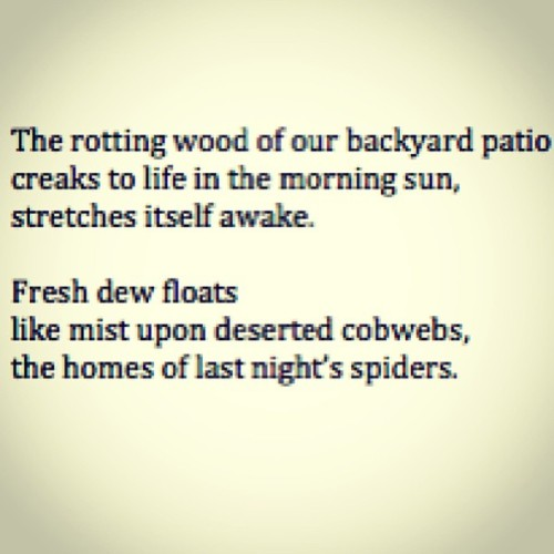 laughingatmynightmare:  Morning Poem