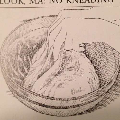 Kinda NSFW there, Cook's Illustrated
