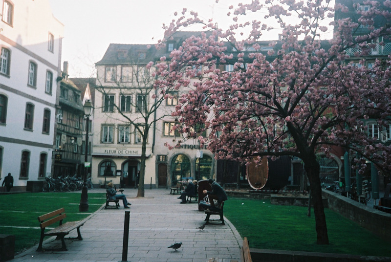 April 2013, Wanderings in strasbourg #4