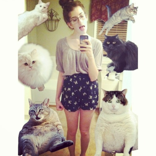 me and my cats meow meow meow