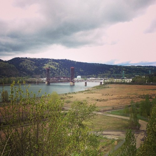 Oh Portland. How beautiful you are!  (at SLUG garden)
