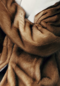 Crop of Prada body coat (945 €) photographed by Ben Weller for Vogue Spain, February 2013