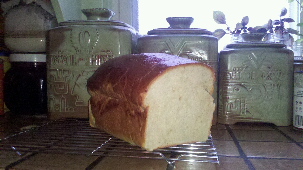 Perfect weather for baking brioche!
