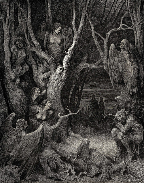 amfortas:  Gustave Dore; The Harpies in their nests and the bloodthirsty Erinyes. Both are illustrations for Dante's Divine Comedy.
