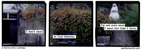 softerworld:  A Softer World: 951 buy this print