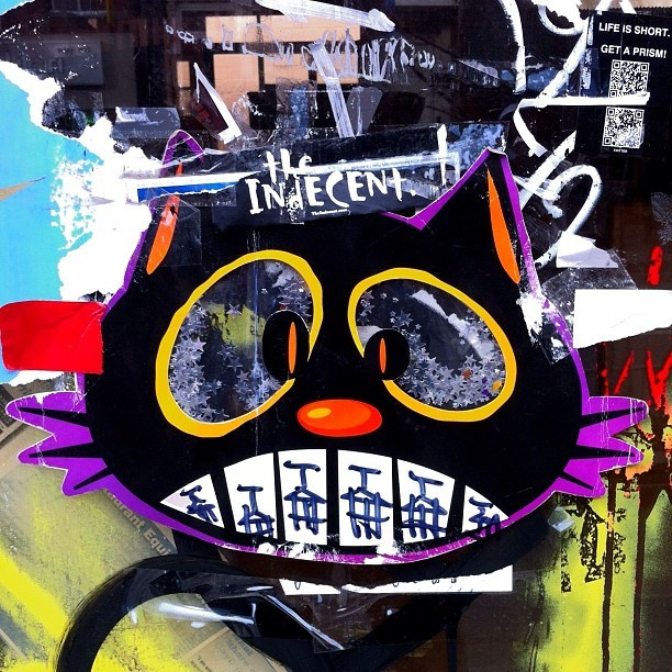 This is not a cat #streetart #stickers #cat #notacat #nyc