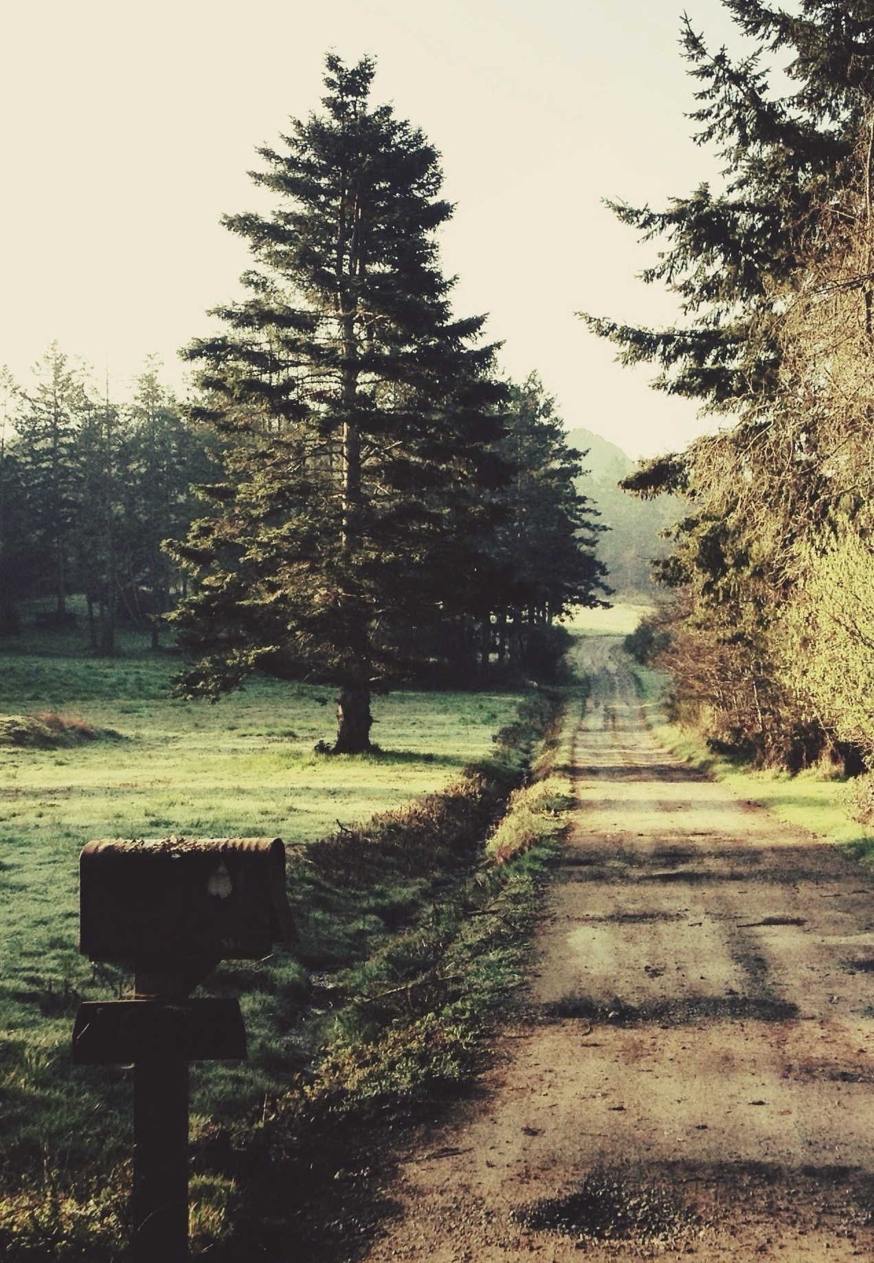 euphoricspirit:  Offset | by Tyler Forest-Hauser.