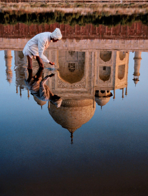 ode-to-the-world:  India