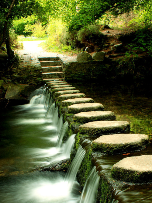 Stepping Stones (by David Kernaghan)