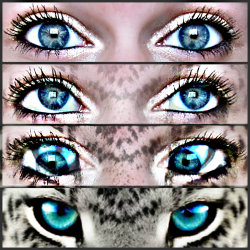 yaaaay my eyes (: