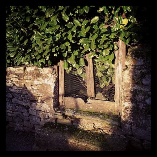 Forgotten. #nature #home #old #ancient #garden