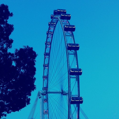 { Singapore Flyer } A massive silhouette of amazing steel framework against a beautiful backdrop of clear blue skies. #singapore #flyer #ferriswheel #silhouette #travel