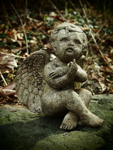 Defiant Angel on Flickr.Happy Springtime!