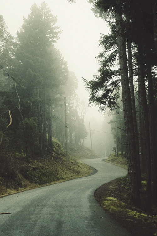 tearingdowndoors:  The Bend | Tyler Forest Hauser