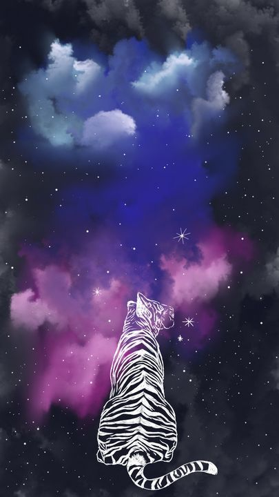 #tiger#space#space tiger#transparency #thinking about tigers