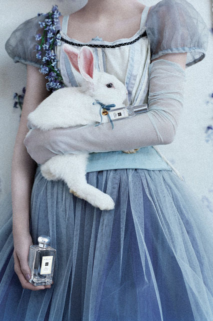 coffiene:  Iekeliene Stange photographed by Tim Walker