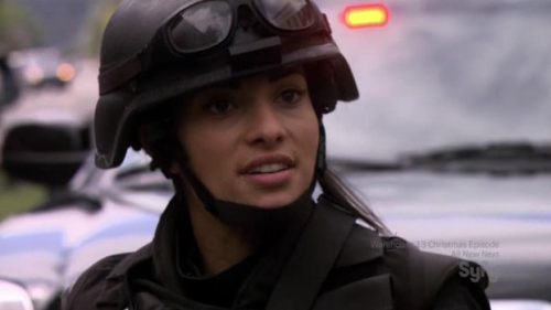 sirdef:  there is nothing more attractive to me than jo lupo in her swat gear
