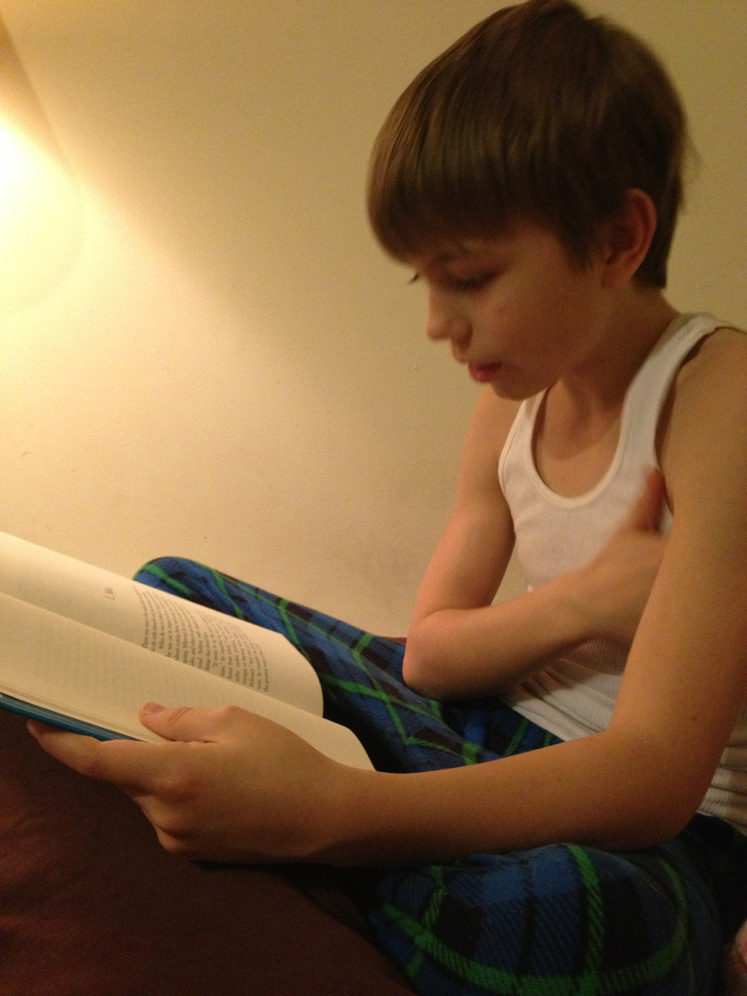 The Boy is reading The Phantom Tollbooth to us for bedtime.