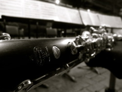 quetuanis:  My Prestige… Bb Bass Clarinet :'3