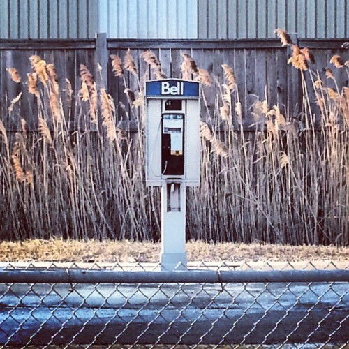 """umm what is that?""  - said the next generation #bell #payphone"