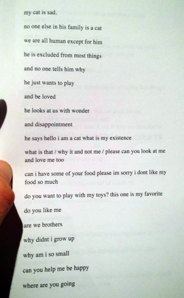 "thedailywhat:  Poem of the Day  Dubbed the ""BEST CAT POEM EVER,"" Spencer Madsen's poem about his sad cat has been getting a lot of love on Tumblr and Twitter."