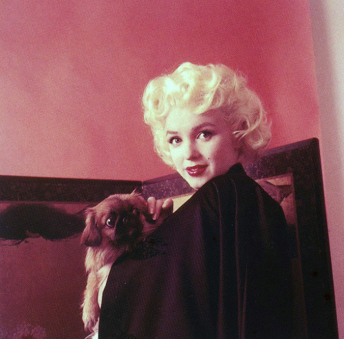 Marilyn by Milton Greene, 1955