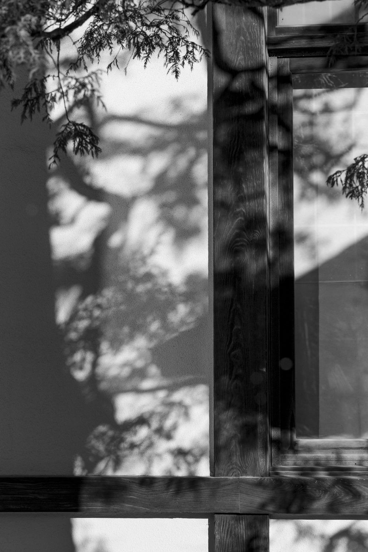 #japanese traditional#shade#nikko#black&white