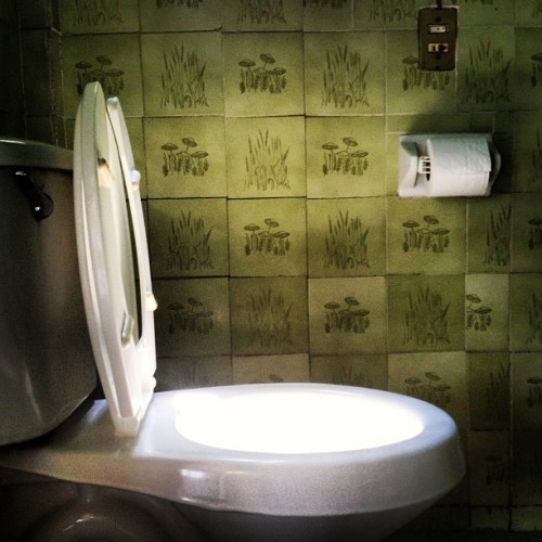 #magic #restroom #light #green #loo #sun #bath #bathroom #love #instagood #me #tbt #cute #photooftheday #instamood #beautiful #picoftheday #igers #instadaily #iphonesia #follow #tweegram #happy #summer #instagramhub #cartayen #followback #abstract  (en Shalom's Palace)