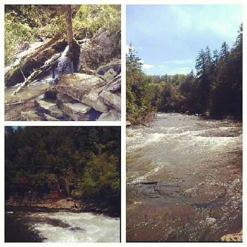 #natural beauty (at swallow falls state park)