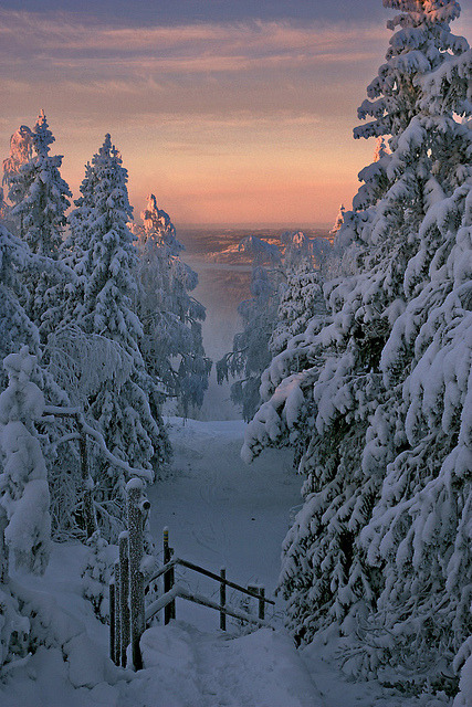 visitheworld:  The golden hour, Kainuu, Finland (by Vesa Laukka).