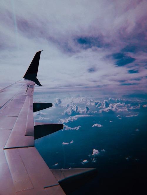 travel fly plane flight aesthetic