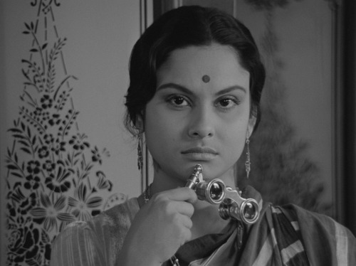 mudwerks:  (via Cannes 2013. Passing Shots: Satyajit Ray, Joel & Ethan Coen, Alex van Warmerdam on Notebook | MUBI) Satyajit Ray's Charulata (1964)