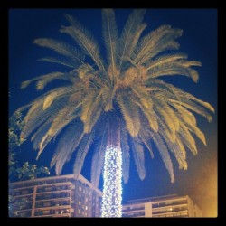 "Esto es … Navidad al ""estilo"" valenciano … XD.. #palm #tree #nature #sky #light #xmas #christmas #decoration #style … #kitsch #city #tropical #trees #palms #navidad #valencia #XD"