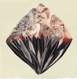 "darksilenceinsuburbia:  Michelle Morin. Dove Diamond, 2012. Watercolor and gouache on paper, 14 x 14"".   http://www.michellemorinart.com/"
