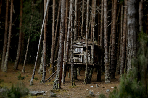 cabinporn:  Treehouse near the Embalse del Neusa, Cundinamarca, Colombia. Submitted by Nick Perkins.