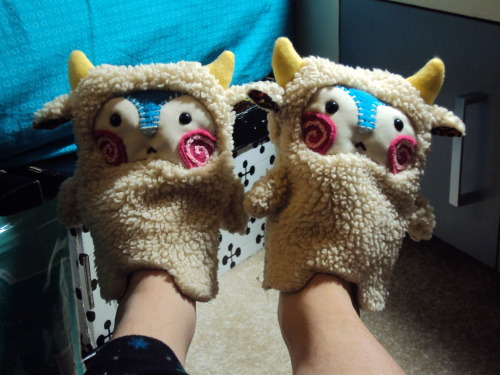 I accidentally slippers… Send help…