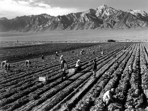 collectivehistory:  Farm workers in front of Mt. Williamson. Photographed by Ansel Adams. 1943.