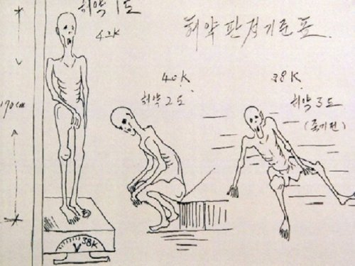 menosquetres:  This is an illustration drawn by a North Korean defector of the atrocities which occur inside the concentration camps (or gulags).