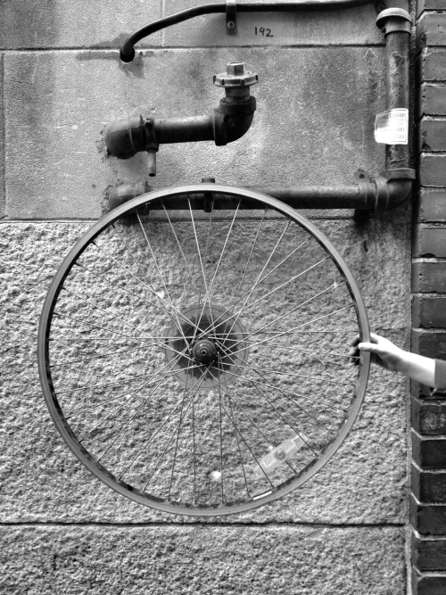 "Bike Wheel ""ready-made"". An homage to Robert Rauchenberg."