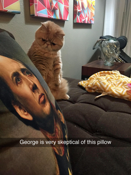 I'm with you, George. (photo by george2legs)