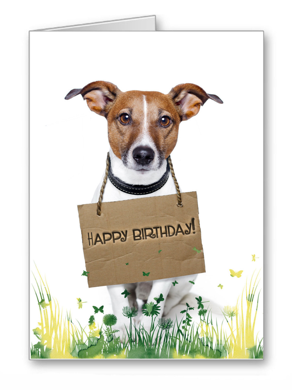 Doggie Funny Memes - Jack Birthday