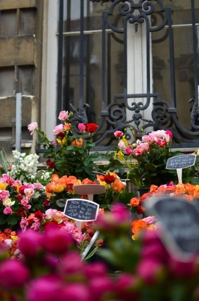 catherinemuellermeow:  reims flower market