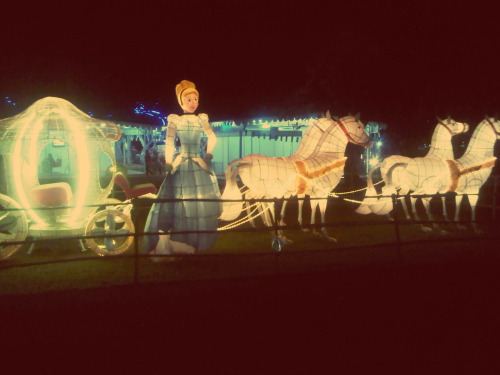 Cinderella is my favorite princess <3 <3 <3