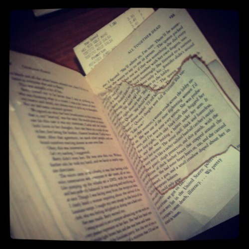 Saber tried to read today…at least he didn't get as far as I have. #dogeatsourstuff #doglit